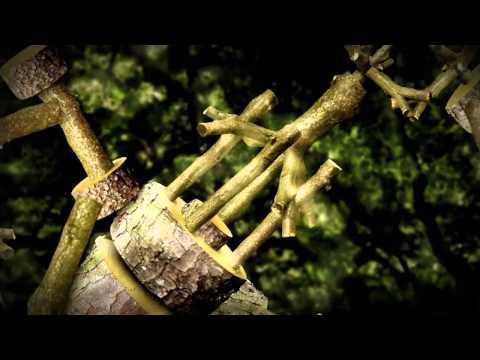 Yellow Bridges (Official Music Video)