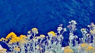 Makarskan Riviera Neretva joki ja Ston. Sirpa Rydman Show Balkanilla 2011
