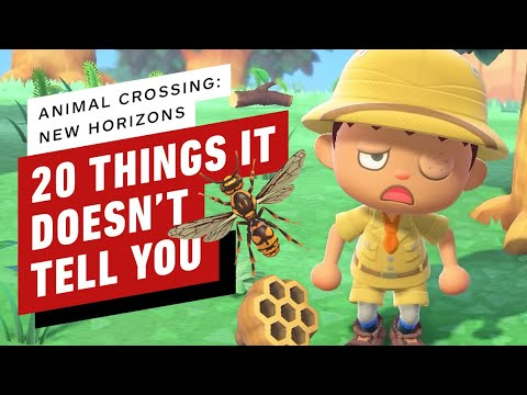 20 Things Animal Crossing: New Horizons Doesn't Tell You