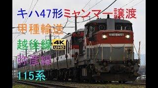517 2020/03/18撮影 キハ47形ミャンマー譲渡甲種輸送 越後線・弥彦線115系 他