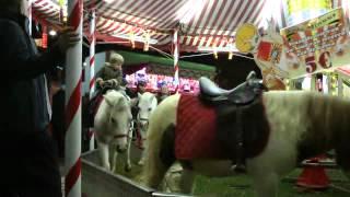 la foire de liege 2012 les poneys