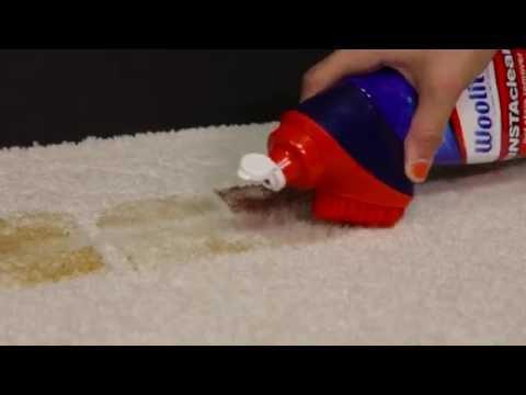 Woolite® Instaclean Pet Brush Head
