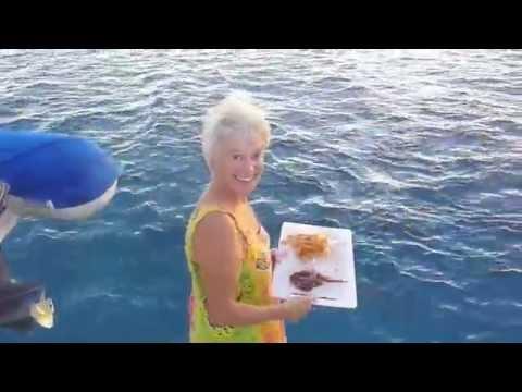 Pacifique à la voile. Polynésie à Nouvelle Calédonie.