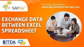 SAP Business One Tips - Exchange Data Between Excel Spreadsheet