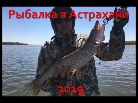 Рыбалка в Астрахани. Весна 2019. Никольское.