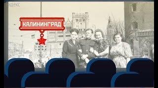 Необычный Калининград: чем этот город отличается от всех других