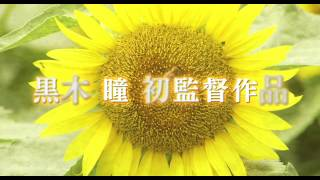 石田徹子はストレートで司法試験に合格し、弁護士となった才媛。29歳で...