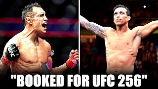 BREAKING! Tony Ferguson vs Charles Oliveira is BOOKED for UFC 256; Alex Pereira returns to MMA