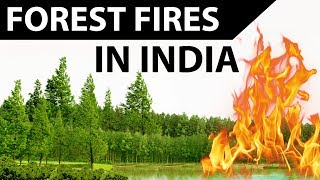 Forest fires in India - Causes, Areas affected and fire disaster management - Current affairs 2018