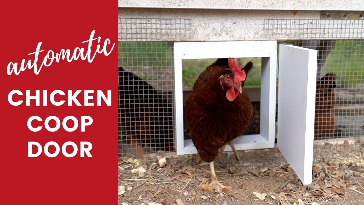 DIY Automatic Chicken Coop Door