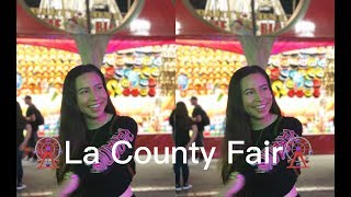 Public Interview: La County Fair🎡 | What Is Your Preference Of Ethnicity In A Partner? | Acpeezy