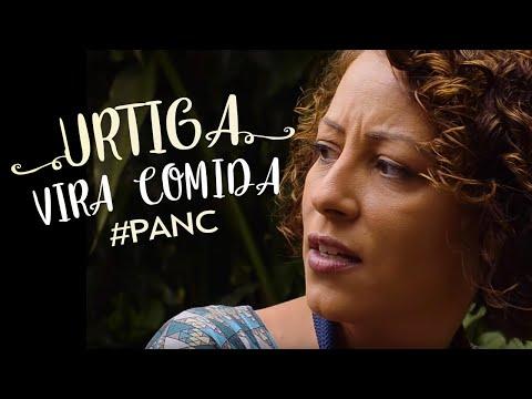 uau:-esta-planta-que-coÇa-e-queima-a-pele-vai-virar-comida!-#panc