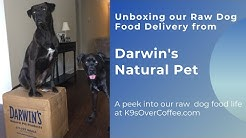 Unboxing Our Raw Dog Food Delivery From Darwin's Natural Pet