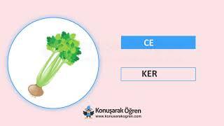 İngilizce Türkçe Sebze İsimleri   Konuşarak Öğren