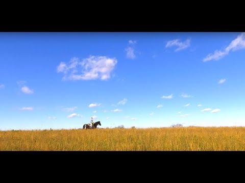 Yellowstone Wildlife Area - From Equestrian Trails To Target Shooting