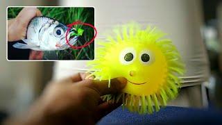 Cara membuat umpan softlure ultralight dari karet pentil mainan anak bola badut, strike terus...