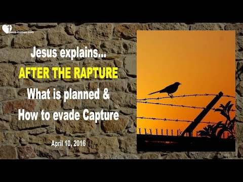 AFTER THE RAPTURE... WHAT IS PLANNED & HOW TO EVADE CAPTURE ❤️ Love Letter from Jesus