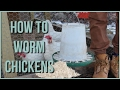 HOW TO Worm Chickens | 100% & Simple