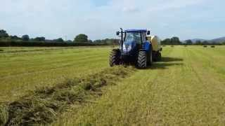 Baling lucerne (Alfalfa) in North Wales