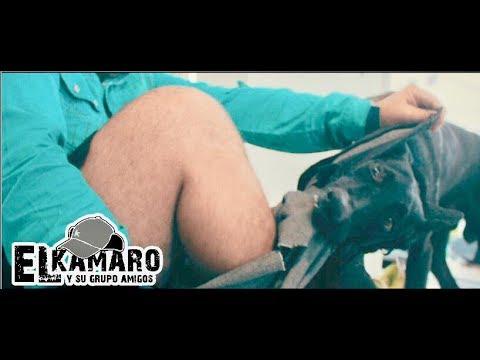 EL PIRULINO (Video Oficial) El Kamaro