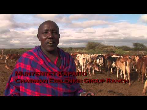 Lion Guardians - Maasai audio with English Subtitles