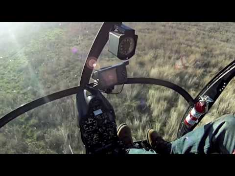 Bell County Hog Hunt Highlights HD