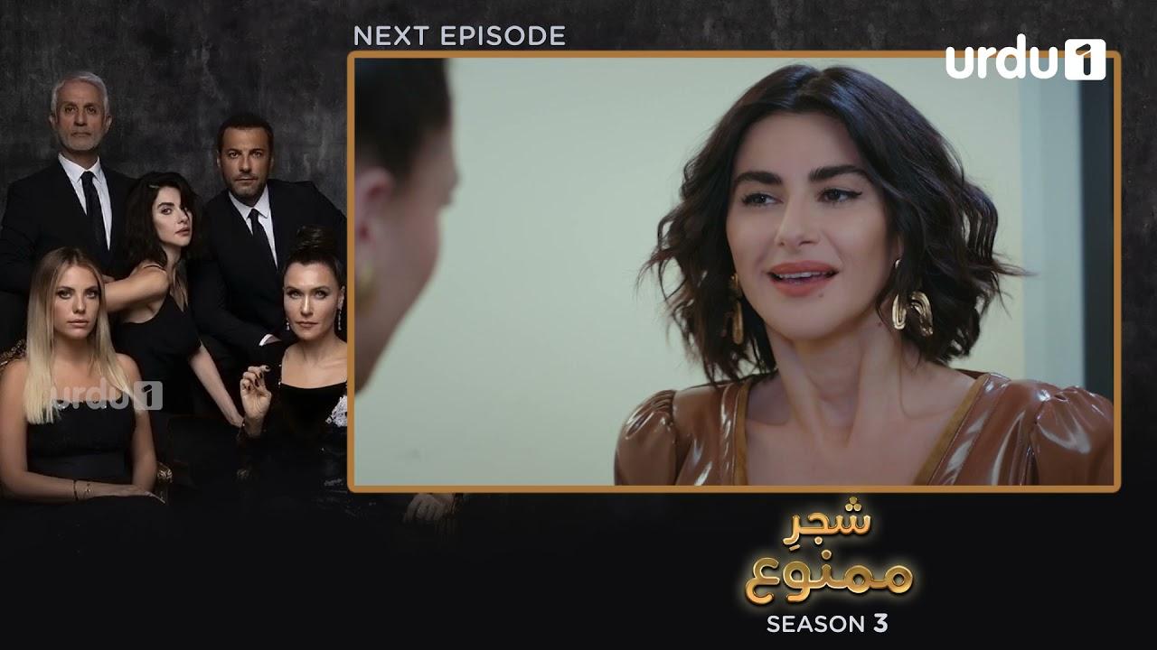 Shajar-e-Mamnu | Episode 222 Teaser |Turkish Drama| Forbidden Fruit |Urdu Dubbing| 14 October 2021