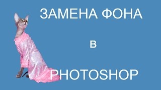 Как вырезать изображение  в фотошопе. Замена  фона на новый.(Больше видео-уроков на http://foto-razumov.ru/text.html Простой урок от Игоря Разумова, как вырезать изображение котенка..., 2013-12-07T18:21:03.000Z)