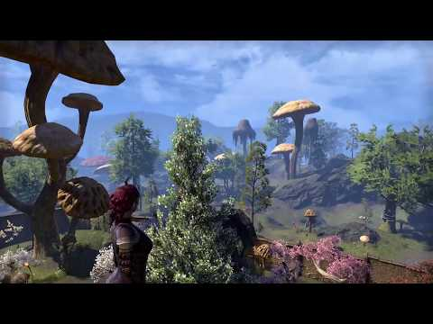 The Elder Scrolls Online - Hlaalu Merchant Villa - Amaya Lake Lodge
