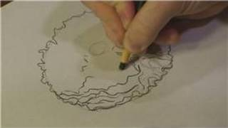 Nature Drawings : How to Draw Peony Flowers