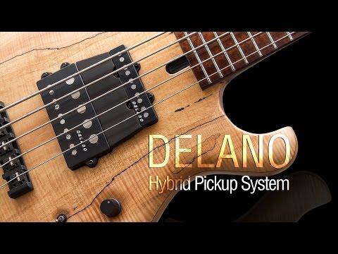 Delano Hybrid Pickup System