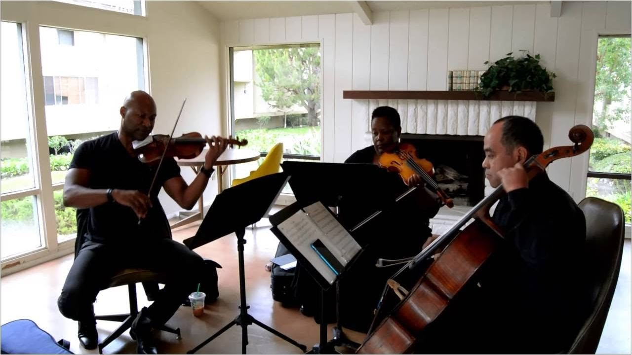 Sheep May Safely Graze Bach String Trio Cover By The Ocdamia Strings