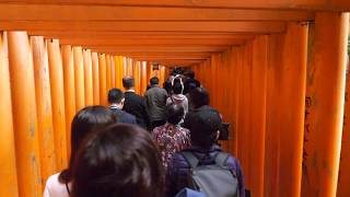 【4K】Midday Kyoto - Fushimiinaritaisha