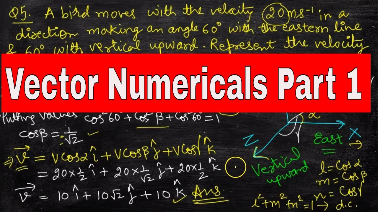 | Vectors | Vector Numericals for Class 11 | Class 11 Physics Chapter 4 |  Part1 |