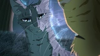 Warriors cats|Коты воители//