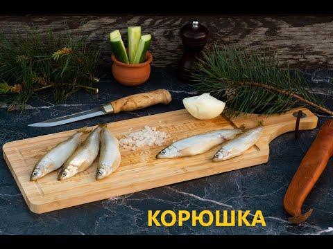 Вопрос: Что за рыба Клыкач, что о ней известно?