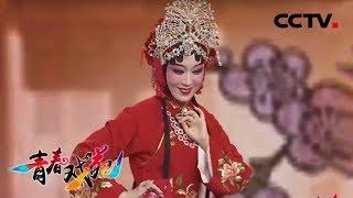 《青春戏苑》 20190611 戏韵芬芳| CCTV戏曲