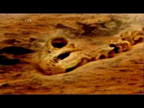 Dinosaur Found On Mars? 2013 1080p Available