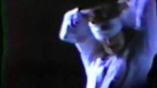 U2 - Maggie