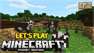 lets play minecraft pocket edition 0160 the animal roundup episode 2 pocket edition
