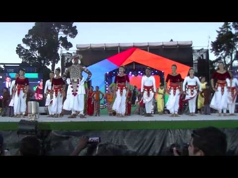 ICC World cup 2015  Opening ceremony