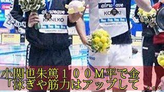 小関也朱篤100M平で金「泳ぎや筋力はアップしている」 天井翼 検索動画 28