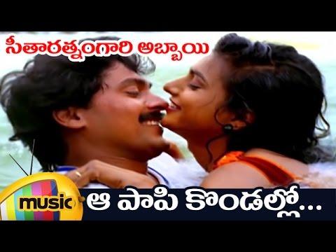 Seetharatnam Gari Abbayi Telugu Movie Songs | Aa Paapi kondallo Full Video Song | Roja | Vinod Kumar