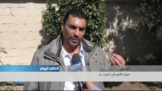 سوق القمح في اليمن يتحول إلى ساحة صراع بين سلطات صنعاء وسلطات عدن