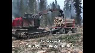 Клип - Про лес (караоке)