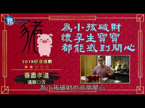 鏡週刊 理財最前線》2019金豬年 詹惟中神預言 12生肖財運大解析