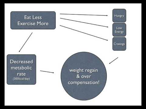 How To Lose Fat With Nutrition Session 1 (Metabolic Effect)