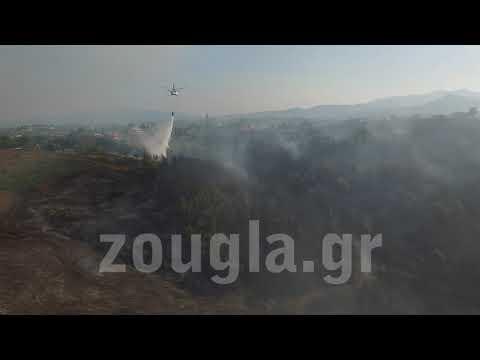 Εικόνες καταστροφής μετά την πυρκαγιά στον Κάλαμο από το drone του zougla.gr 2