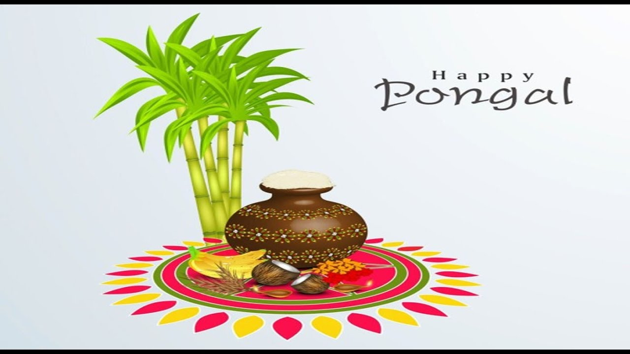 Happy pongal 2018 greetings wishes whatsapp video e card free happy pongal 2018 greetings wishes whatsapp video e card free download hd video 5 youtube m4hsunfo