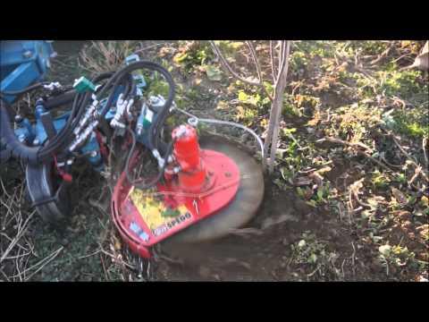 Duyargalı Fırçalı Tam Bodur Bahçe Çapası